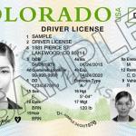 Colorado Driver License