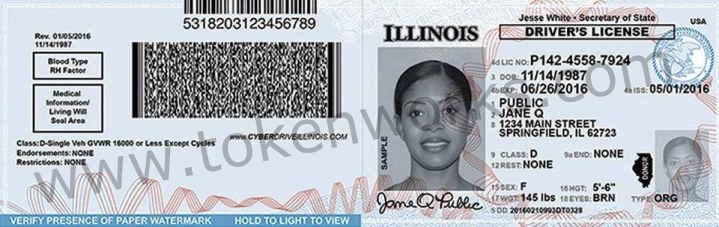 IL Temporary Driver License