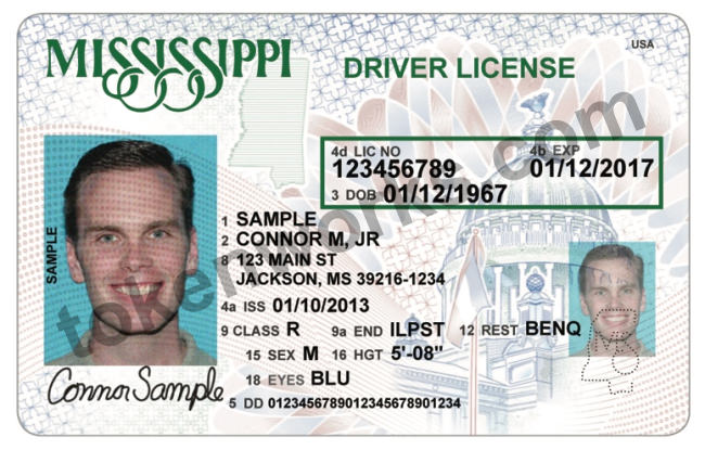 Locations Renewal License Ms Drivers
